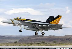Boeing F/A-18E Super Hornet aircraft picture