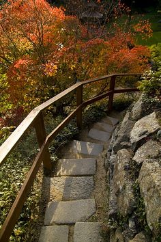 Stairs in Powerscourt Garden Ireland Ireland Vacation, Ireland Travel, Irish Catholic, Love Ireland, Emerald Isle, Garden Features, Autumn Trees, Great Pictures, Stairways