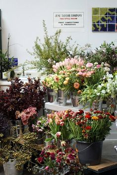 flowers, flower shop.