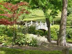 Japanese Garden, Ft. Worth, TX