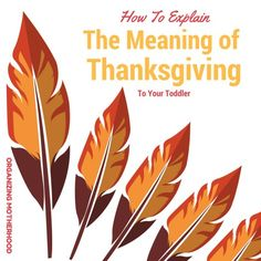 How To Explain The Meaning Of Thanksgiving To Your Toddler  http://www.organizingmotherhood.com