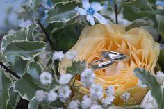 Terka + Marek - Couple Memory Wedding Rings, Memories, Engagement Rings, Couples, Plants, Memoirs, Enagement Rings, Souvenirs, Couple