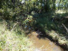 8.76 Acres in Leon County, Texas - Property - LandAndFarm.com - Land for Sale