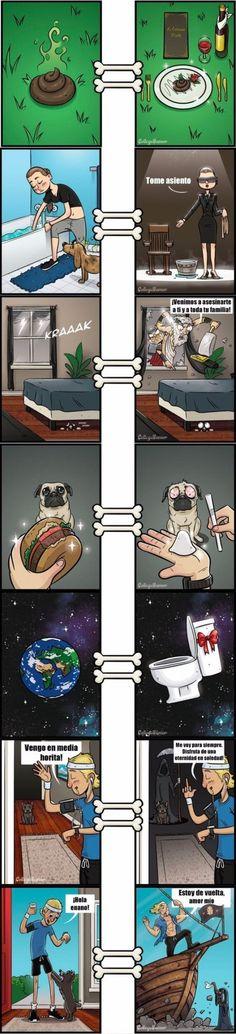 Como ven el mundo los perros