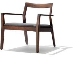 Krusin Lounge Chair With Upholstered Seat - hivemodern.com