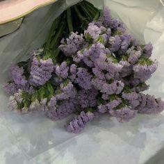 Lavender Aesthetic, Nature Aesthetic, Flower Aesthetic, Purple Aesthetic, My Flower, Beautiful Flowers, Lightroom Gratis, Cactus Plante, Pretty Pictures