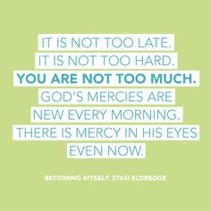 It is not too late.  It is not too hard.  You are not too much.  God's mercies are new every morning.  There is mercy in his eyes, even now.