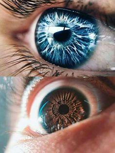 iridologia (gazzurellia) on Pinterest
