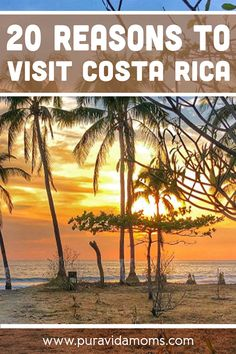 Costa Rica is an affordable family fun paradise with beaches, rainforest, coffee, river rafting and more. 20 reasons you need to visit ASAP. Costa Rica With Kids, Living In Costa Rica, Beautiful Places To Travel, Cool Places To Visit, Costa Rica Pacific Coast, Top Travel Destinations, Travel Tips, Equador, Hidden Places