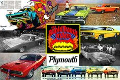 The Plymouth Rapid Transit System Collage