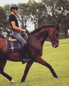 If things don't go your way with horses you either asked the wrong question or asked the question wrong ☝ #equestrian #equestrianstockholm #horse #equestrianperformance