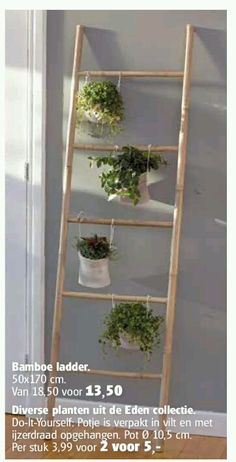 Bamboo ladder                                                                                                                                                                                 More
