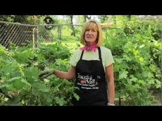 Tricia shows you how to trim your grape vines in the summer months. Learn how to thin fruit, tuck vines, and sucker trunks. Details in our blog post http://groworganic.com/organic-gardening/articles/pruning-grapes-in-the-summer-tips-for-growing-grapes-in-the-home-garden. All you need to grow organic, in one place at our site http://www.groworgan...