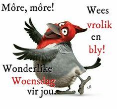 Wednesday Wishes, Wednesday Humor, Afrikaanse Quotes, Goeie Nag, Goeie More, Christmas Cards To Make, Morning Greeting, Good Morning Quotes, Videos Funny