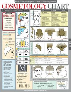 Cosmetology Chart & Cheat Sheet For Hair Stylists, Students & Educators Laminated Spill-Proof & Tear-Proof x 11 Six Pages-Includes Information On Hair Cutting, Hair Color & Hair Cutting Techniques, Hair Color Techniques, Hair Rainbow, Cosmetology Student, Cosmetology State Board, Hair Skin Nails, Tips & Tricks, Cut And Color, Hair Hacks