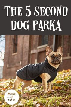 If your tired of trying to get a warm coat on your excited dog this winter, check out the 5 second parka. #dogs #dogcoat #dogcare