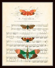 Items similar to Antique Insect Original Collage on Vintage Sheet Music Series Plate 4 Natural History Art Print 8 x 10 on Etsy Sheet Music Decor, Vintage Sheet Music, Etch A Sketch, Insect Art, Butterfly Print, Collage Art, Vintage Art, Craft Projects, Paper Crafts