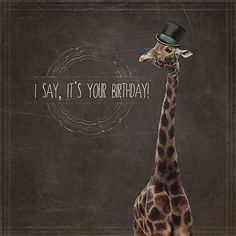 Giraffe Birthday Card by Martha Bowyer | Design & Illustration