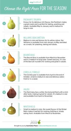 Choose the perfect pear variety this with insightful guide for pear season. Choose the perfect pear variety this with insightful guide for pear season. Fresh Fruits And Vegetables, Fruit And Veg, Pear Fruit, Veggies, Fruit Recipes, Baby Food Recipes, Healthy Recipes, Recipies, Kids Nutrition