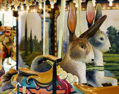Carousel Bunnies – Glen Echo Park, Maryland