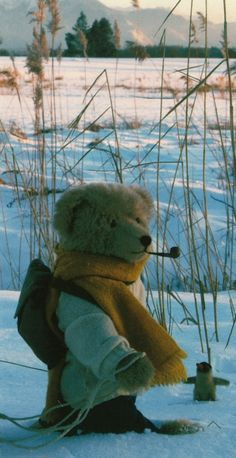 stuffed teddy bear in the snow