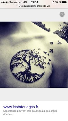 circular tree roots with birds mens chest tattoo tattoo pinterest trees men 39 s style and. Black Bedroom Furniture Sets. Home Design Ideas