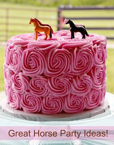 Great horse party ideas. Horse cake is so cute! I would use only one slightly larger horse figure