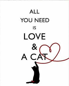 All you need is . . .
