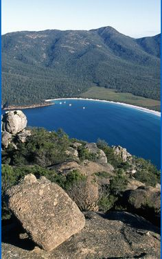 10 Best Tasmania Beaches. This beach is not only one of the best beaches in Tasmania, but it has consistently won the hearts of international visitors and has made it onto many top ten lists of beaches around the world. #travel #summer #Australia #beaches #tasmania #water #freycinet #nature Tasmania, Top Ten, Beautiful Beaches, Scenery, Wildlife, Around The Worlds, Hearts, Australia, Island