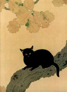 'Black Cat' [detail], 1910 (artwork by Hishida Shunso) Art And Illustration, Design Illustrations, Black Cat Art, Black Cats, Frida Art, Japanese Cat, Japanese Painting, Japanese Artwork, Japan Art
