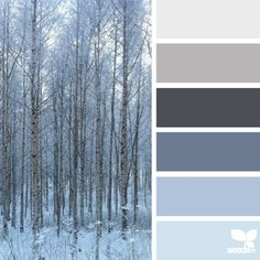 """today's mesmerizing inspiration photo is by @bbaumish ... { forest tones }#SeedsColor"""