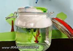 10 eksperymentów z wodą, które możesz zrobić w domu | Mama w domu