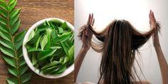 female hair loss treatment shampoo