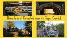 Top 10 Things to do at the Disneyland Resort when it's Crowded