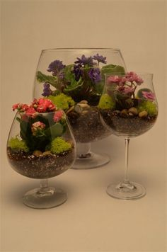 Repurpose unmatched sets of wine glasses and turn them into terrariums
