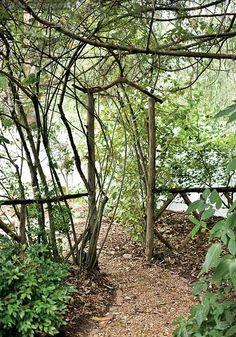.Rustic garden gate