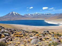 Laguna Miscanti, San Pedro de Atacama Chile.