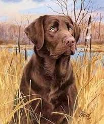 Image result for dog paintings images