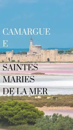 Best places to travel information are offered on our internet site. Read more and you wont be sorry you did. Best Places To Vacation, Vacation Destinations, Vacation Spots, Places To See, Moustiers Sainte Marie, Valensole, Jamaica Travel, Reisen In Europa, Travel Abroad