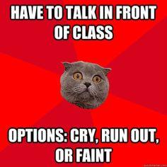 Chronic Anxiety Cat
