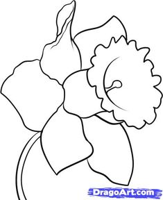 This site has instructions for how to draw all kinds of things. Search on the flower you want to draw or just flowers.  This will help me paint rocks or markers for the garden:  http://www.dragoart.com/tuts/5969/1/1/how-to-draw-a-daffodil.htm