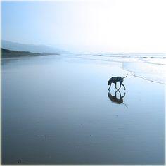 on the beach by sth22art.deviantart.com