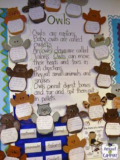 Owl facts anchor chart with a focus on plurals vs. Stop by this post for more easy fall activity ideas-plus a free shades of meaning sort. Owls Kindergarten, Kindergarten Activities, Classroom Activities, Owl Activities, Autumn Activities, September Activities, Activity Ideas, Physical Activities, Learning Activities