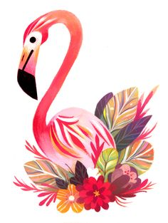 "t-price: "" flamingo """