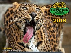 2018 Turpentine Creek Wildlife Refuge Calendar