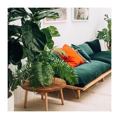 Our kind of Jungalow sitting room! That platform couch is ! Green plant design plants botanical botanics home decor design style styling house interior lounge couch living hippie bohemian Estilo Tropical, Home Interior, Interior And Exterior, Scandinavian Interior, Modern Interior, Interior Decorating, Decorating Ideas, Interior Styling, Interior Office