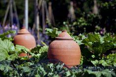Terracotta forcing pots in the Kitchen Garden at Tintinhull Garden, Somerset.