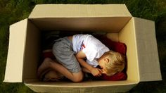 The Adventures of a Cardboard Box by Studiocanoe