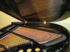 www.classicwoodsbyphenoyd.com Carbon Fiber, Music Instruments, Carbon Fiber Spoiler, Musical Instruments