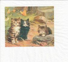 1 seltene Cocktail Serviette - Napkin (PP485) Katzen